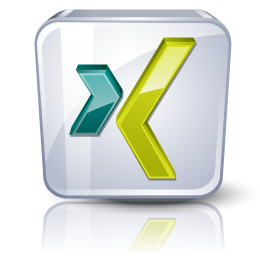 Xing-high-Detail-Icon
